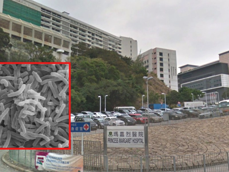 A Hong Kong woman diagnosed with cholera was treated in isolation at Princess Margaret Hospital. Photo: Google Maps, Wikimedia Commons, Zeimusu