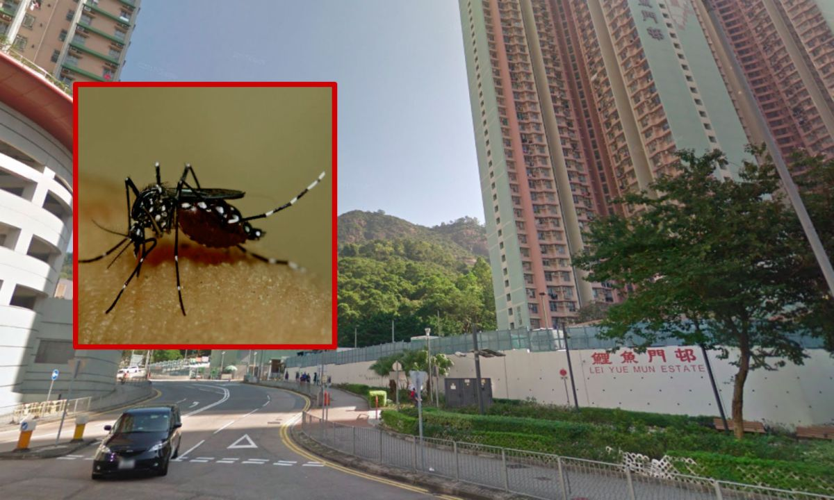 Yau Tong in Kowloon where many mosquitoes were found. Photo: Google Maps/Wikimedia Commons