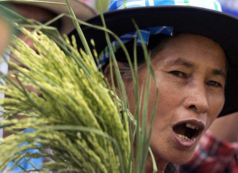 Thai farmers in a political protest in a 2014 file photo. Photo: AFP/Pornchai Kittiwonsakul