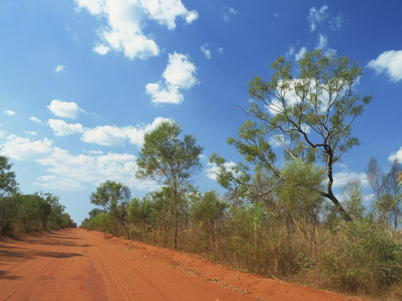 Road to Cap Leveque, Dampier Peninsula, Kimberley. Mining leases have been granted across the peninsula. Photo: AFP