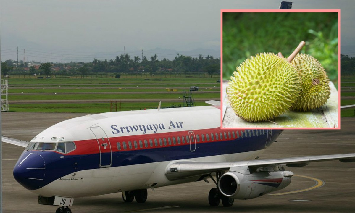 The smell of the durian was unbearable for the passengers. Photo: Background/Wikipedia, Inset/iStock.