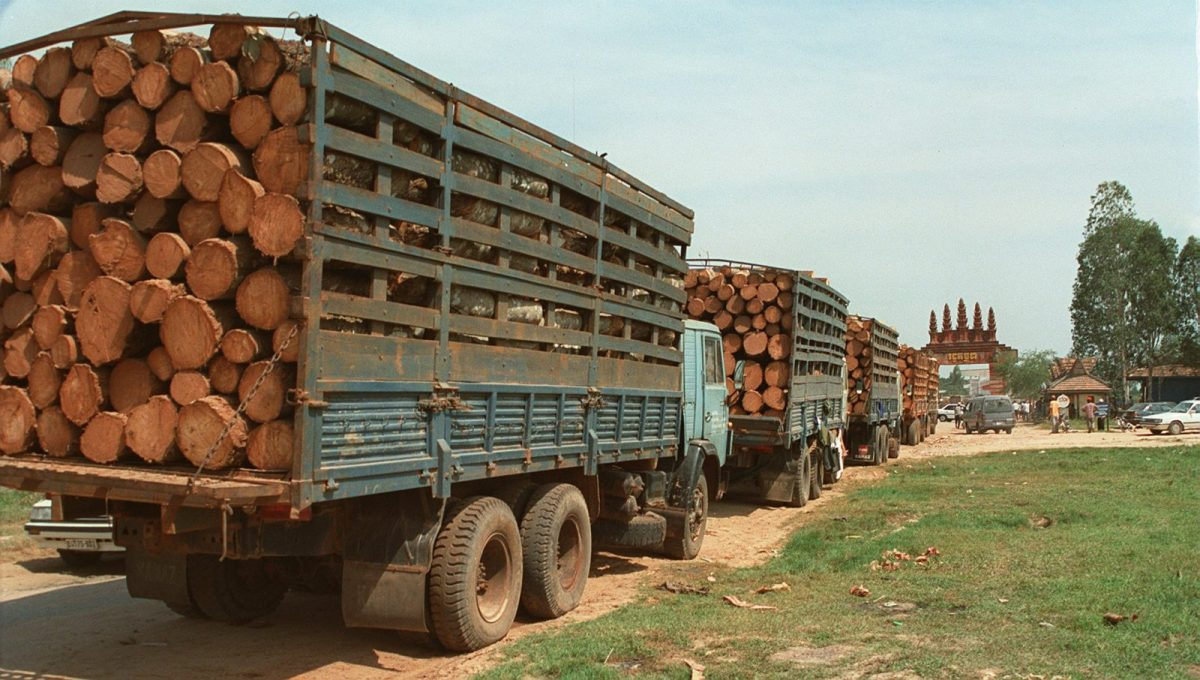 Twenty trucks loaded with timber wait at the Cambodian border post of Bavet for clearance to cross into Vietnam last December. The logs appear to be 'unprocessed,' and export would be illegal under Cambodian law. Photo: AFP/Stew Magnuson