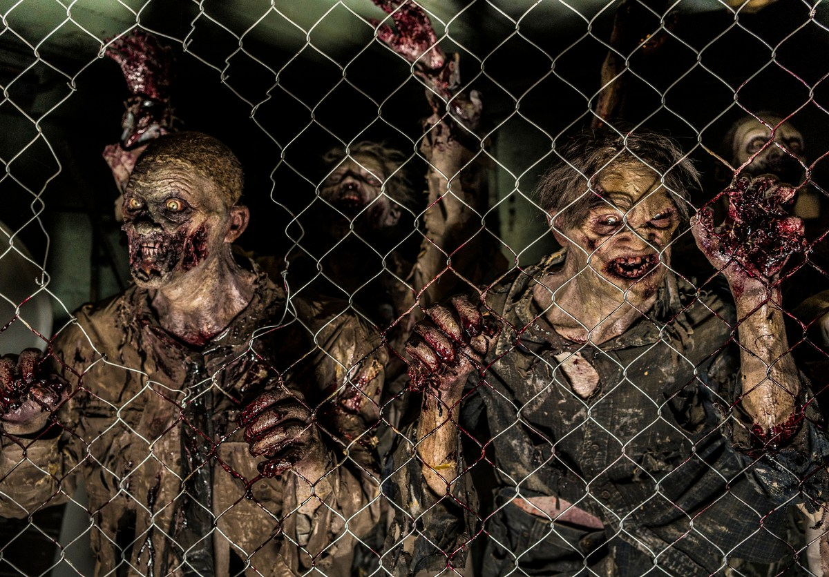 Zombies Behind A Fence: iStock