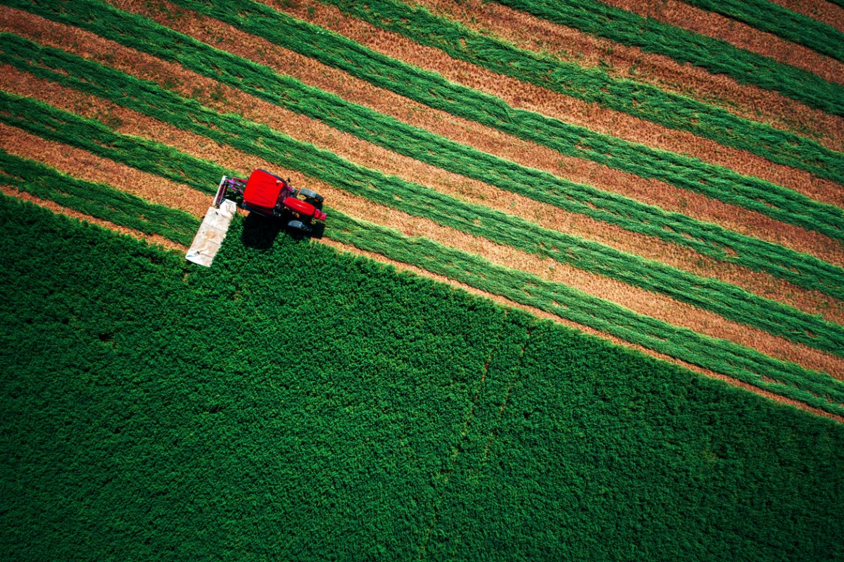Tractor mowing green field, aerial view.Photo: iStock