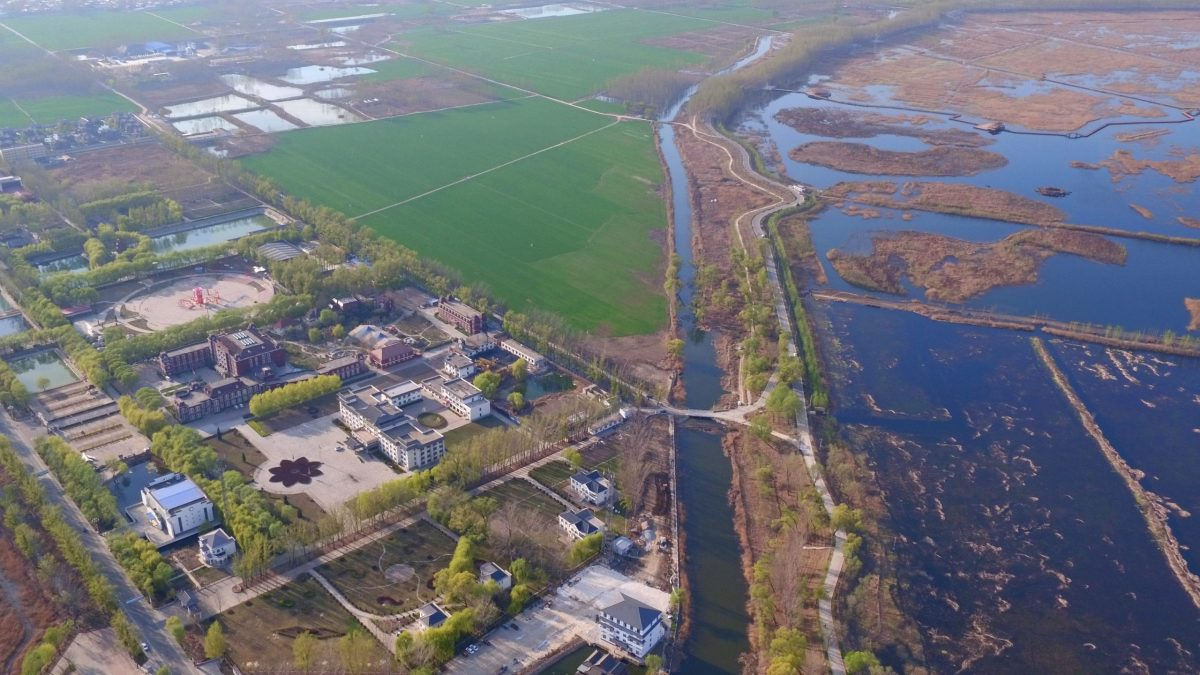 An aerial view of a wetland in Xiong'an New Area. Photo: Xinhua