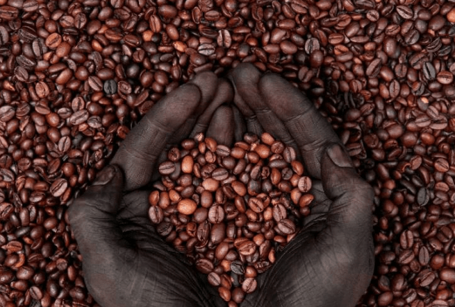 Coffee: An Ethiopian Legend