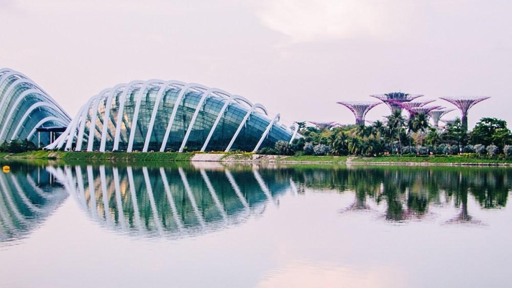 HK biz welcomes Singapore travel bubble relaunch