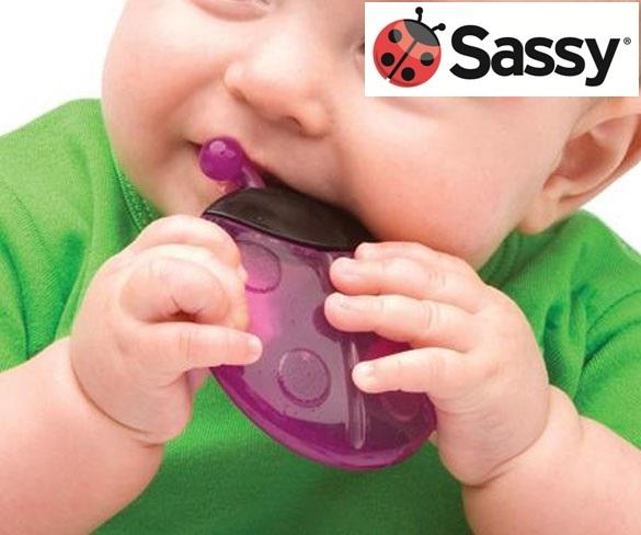 sassy ladybug teether