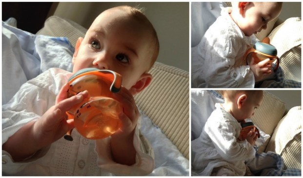 tommee tippee sippee cup 4m+ in use 2