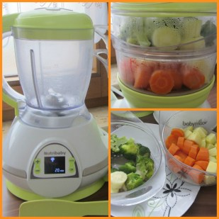 Online Baby Shopbabymoov Nutribaby Food Processor Online