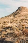 McDowell Sonoran Desert Preserve Scottsdale AZ Hikes