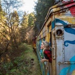 Skunk Train Fort Bragg - Dog Friendly Vacation Activities Northern California