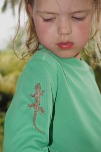 überall Geckos, Laras aktuelles Lieblingstier