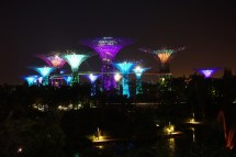 Supertree Grove im Gardens by the Bay