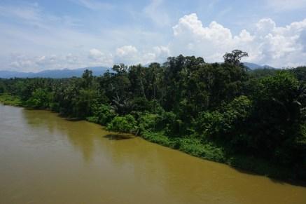Landschaft bei Ipoh, Perak Fluss
