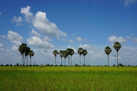 Landschaft im Nordwesten Kambodschas