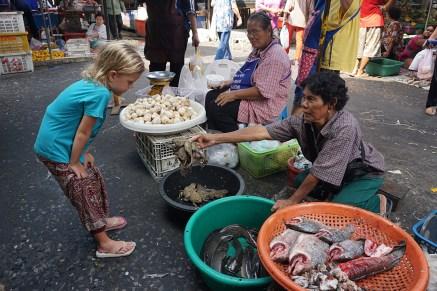 lecker Kröten zu verkaufen - Ayutthaya