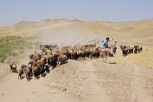 im Nordwesten des Irans