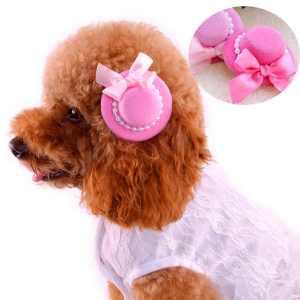 vestir a mi perro 2