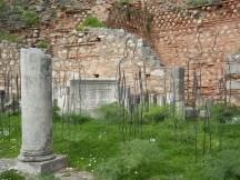 delphi 20 apollo