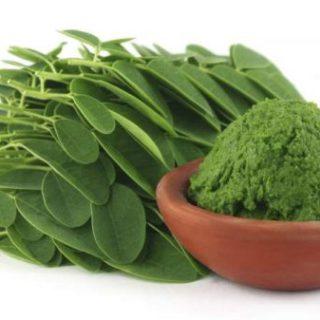 Moringa leaf cure malaria ,boost the immune system, Moringa leaf cure hepatitis B