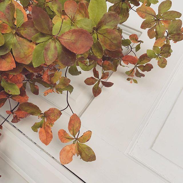 アンティークドアに秋をトッピング