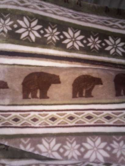 BearBlanket