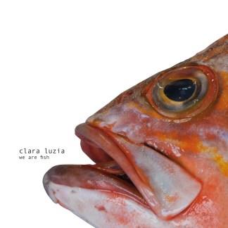 clara luzia we are fish