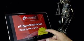Tribunal_Electronico02_TSJEM