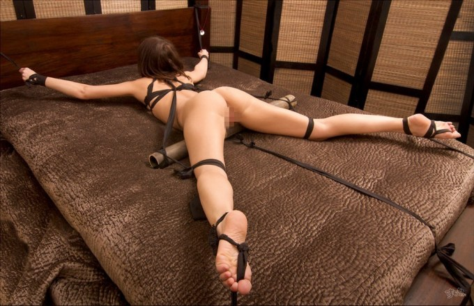 bed_restraint_5097-022