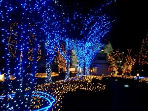 Bright-Christmas-Lights-bright-colors-17363873-1600-1200