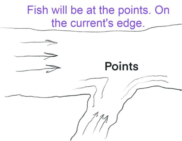 River fishing for beginners, points