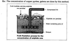 Write short notes on froth floatation process  Class 10 Science  Learn CBSE Forum