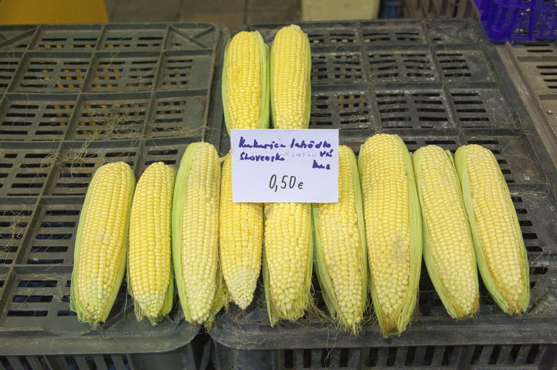 Lonely corn