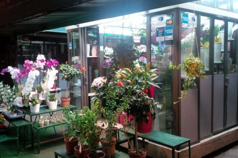 Flower shop at night