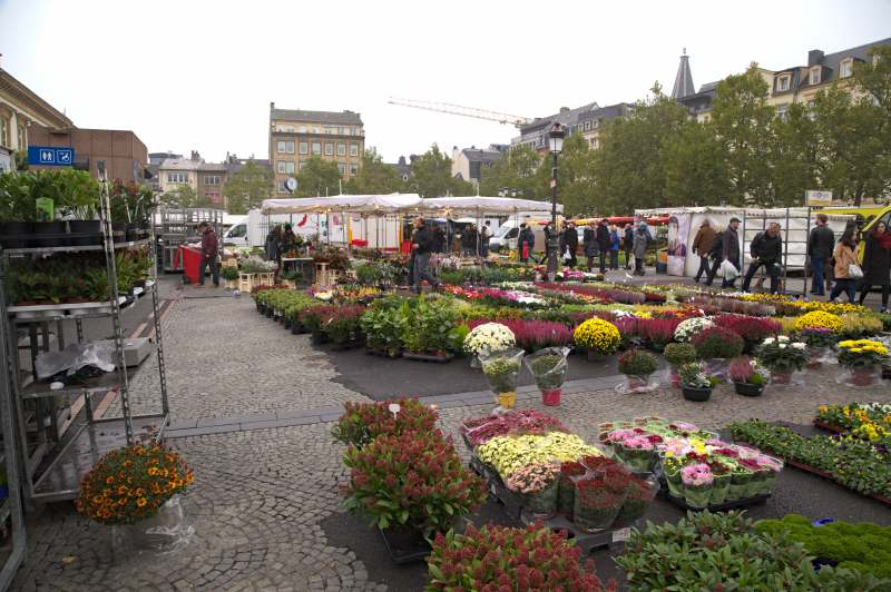 The flower stall