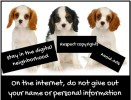Internet safety 1