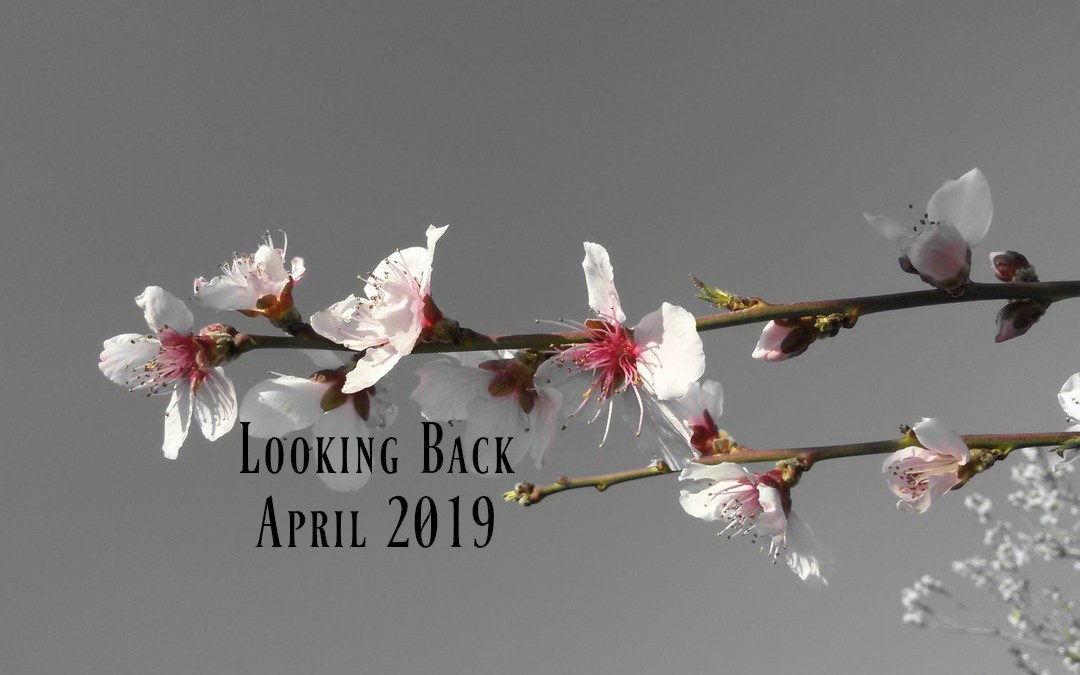 Looking Back | April 2019
