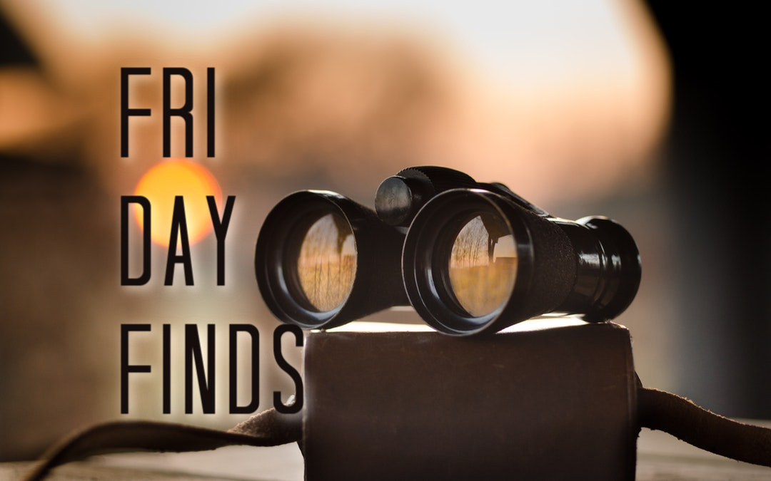 Friday Finds | 11.13.20