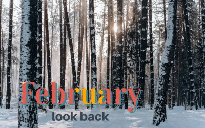 Looking Back | February 2021