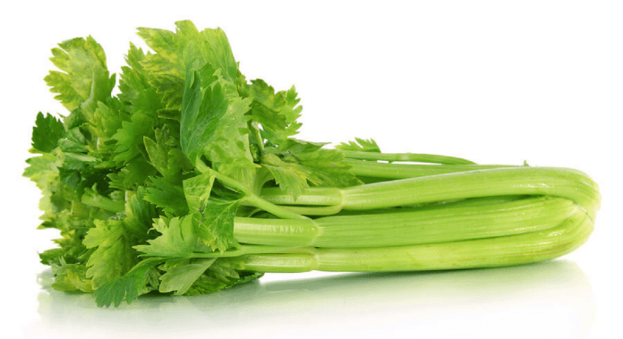 Image result for celery