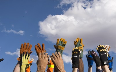 FORNEYHIDE GLOVES: EVERYTHING WORKING HANDS NEED