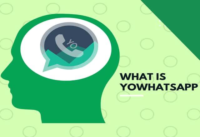 YoWhatsApp v8 (YoWA Apk) Download Android Latest Version
