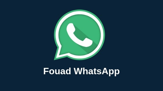 Fouad Whatsapp Apk Latest Version 8.31 Download in 2020 -