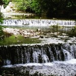 Лягушачьи лапки на хорватской земле