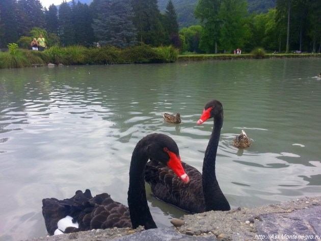 парк Визиль Франция фото