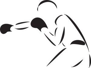 Boxer grafische Darstellung