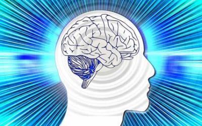 Cervello al Top: 10 consigli per mantenere il cervello attivo