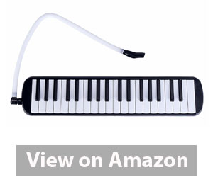 Mugig Melodica 37 Key Piano Style Melodica Review
