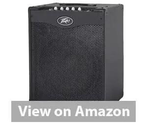 Best Bass Combo Amp: Peavey 03608210 Bass Combo Amplifier Review